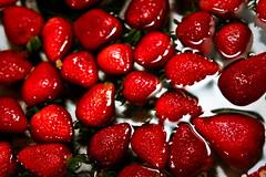 [フリー画像] [食べ物] [果物/フルーツ] [苺/イチゴ] [赤色/レッド]       [フリー素材]