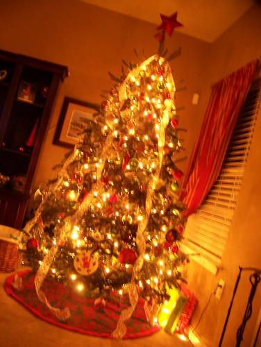091219 Christmas Tree in den 02