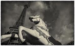 Eiffel Carousel Horse (s.j.pettersson) Tags: sjpettersson paris eiffeltower carouselhorse blackwhite