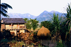 Nepal Home