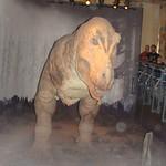 T-Rex Natural History Museum, London thumbnail