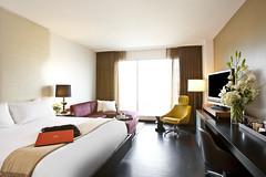 Hotel Sorella Guestroom