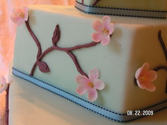 Apple Blossom Cake close-up