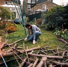 Lumberjack (edscoble) Tags: wood houses tree 6x6 grass garden back angle snapping wide down line cutting medium format kneeling washing leonie twiglet cicirello