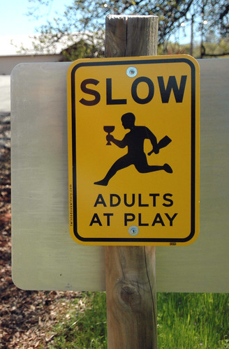 Slow Adults at Play