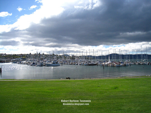 hobart harbour greenery wallpaper_1600x1200