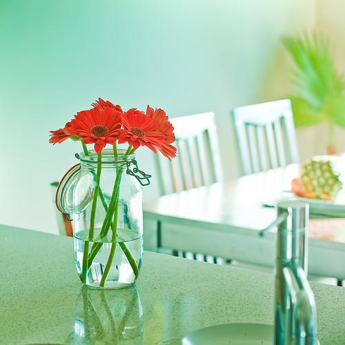 Flowers / Interior