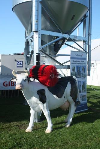Cow scrubber 2
