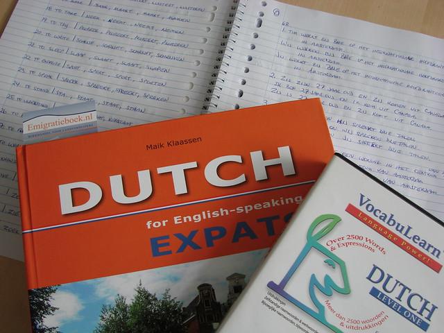 AKA Dutch for Idiots