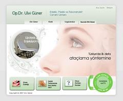 ulvi gner web sitesi (hayl-i meyl) Tags: inspiration ads advertising design site web internet webdesign website reklam ilham advertise aesthete tasarm estetisyen webtasarm