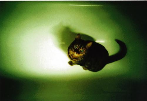 Leah Bathtime
