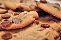 38/365 (Lea and Luna) Tags: food cookies dessert nikon cookie bokeh tasty bakery 365 baked bakedgoods chocolatechips peanutbuttercups chocolatechunks 38365 d5000 365bokeh 365daysofbokeh goesgreatwithacoldglassofmilk