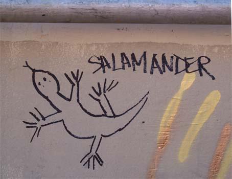 SalamanderGraffiti