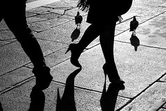 (35) Pigeons are too fat to have legs that thin (Donato Buccella / sibemolle) Tags: blackandwhite bw italy milan shadows legs milano pigeons streetphotography duomo canon400d sibemolle