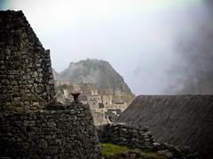 Le Machu Picchu se dévoile (Wanaku) Tags: peru inca cuzco cusco machupicchu pérou valléesacrée valleesagrado