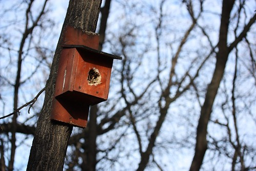 Riverwalk Birdhouse