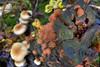 Autunno (Pln81{...D90 Addicted...}) Tags: mushroom foglie canon 350d foliage gelato funghi monte tronco autunno bosco