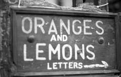 oranges & lemons (Emma Swann) Tags: olympusom10 fujineopan1600
