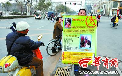 """男子上海打""""飞的""""回西安寻找丢失爱犬"""