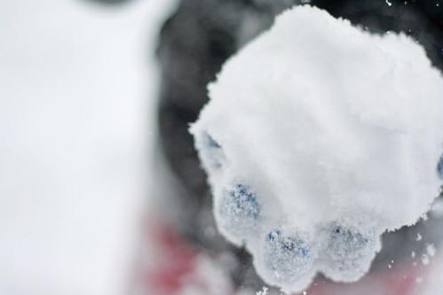 snow days are FuN!