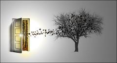 Seasons (by debeo777)