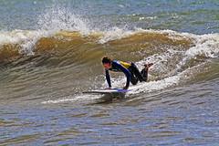 Uppstart 1 (Quo Vadis2010) Tags: westcoast västkusten kattegatt hallandslän halland municipalityofhalmstad halmstadkommun halmstad sandhamn görvik cityofsurfers wavesurfing wavesurf vågsurfing vågsurf surfing surf vågor våg sea hav beach strand surfbräda bräda sport activity aktivitet lifestyle livsstil se