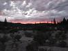 Ananda Sunset