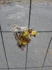 Vienna west, 11 (thedoor4more) Tags: vienna constructionarea austria sterreich demolition baustelle renovation renovierung abriss wienwest