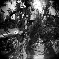 Doll island - isla de las muecas 2 (jade.cantwell) Tags: las blackandwhite mediumformat square de blackwhite holga doubleexposure 120film multiple muecas exposuremexicomexico cityxochmilcochinampaisla