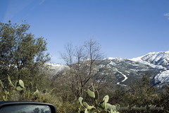 IMG_8019 (Miguel Angel Mora (GSi_PoweR)) Tags: espaa snow andaluca carretera nieve nevada sunday bosque granada costadelsol domingo maroma mlaga mountainroad meteorologa axarqua puertomontaa zafarraya sierraalmijara caosalcaiceria
