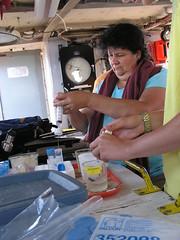 Carmen filters samples in the Neeskay's lab. ~photo Jennifer Yauck
