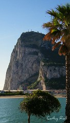 Rock of Gibraltar (cmphotoroll) Tags: uk unitedkingdom palmtree gibraltar colony rockofgibraltar worldwidewandering