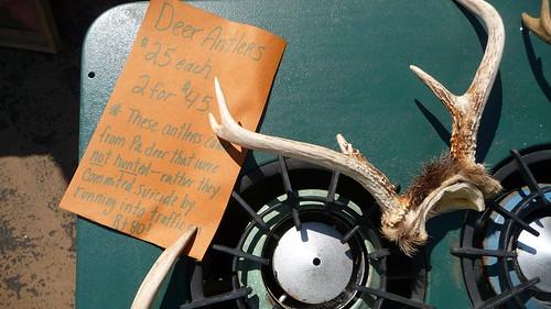 Deer antlers & a great old kerosene stove