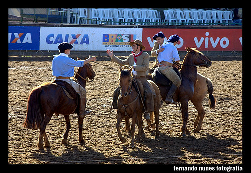 Paleteada Argentina 2009