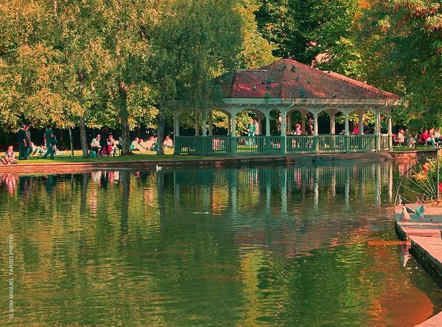 El viejo parque / The old park