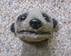 Meercat puppet