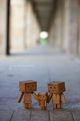 ... (sndy) Tags: sanfrancisco toy toys box figure figurine sindy kaiyodo yotsuba danbo revoltech danboard   beyondbokeh amazoncomjp