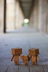 我不走... (sⓘndy°) Tags: sanfrancisco toy toys box figure figurine sindy kaiyodo yotsuba danbo revoltech danboard 紙箱人 阿楞 beyondbokeh amazoncomjp