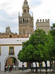 sevilla 144 (XimoPons : vistas 4.500.000 views) Tags: españa sevilla spain catedral andalucia catedraldesevilla ph227 ximopons