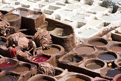 Fez tanneries (Daveybot) Tags: travel vacation holiday leather honeymoon morocco fez maroc marocco medina fes leatherwork tannery tanneries elbali