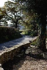 Down the Lane 2 (annicariad) Tags: wales photoshop cymru lessons annicariad araredryday collegesendsateacher