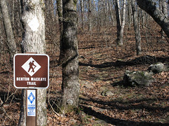 Benton MacKaye Trail Photo