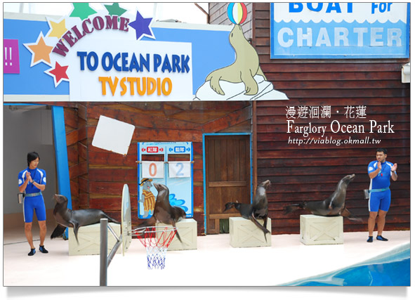 花蓮海洋公園一日遊15
