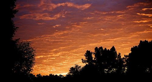 Sunrise December 9 2009