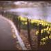 central park spring by leslie*thomson