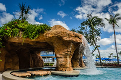 Bahamas-060.jpg (ajdoudt) Tags: patrick sun sunny roper palmtree vacation wedding bahamas shannon tropical shanny