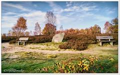 Aussichtspunkt am Suhorn (Don111 Spangemacher) Tags: heide himmel heidekreis gedenkstein niedersachsen natur naturschutzgebiet naturpark reisen romantik landschaft lüneburgerheide laubfärbung niederhaverbeck
