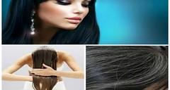 جمال الصقلي هذه الوصفة أكثر من رائعة تصبغ الشعر باللون الأسود (lalabahiya) Tags: جمال الصقلي هذه الوصفة أكثر من رائعة تصبغ الشعر باللون الأسود وصفات طبيعية