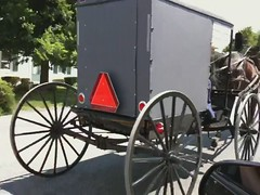 Amish buggy (expictura) Tags: video amish pa intercourse buggy 3gs iphone