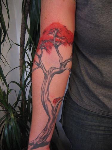 Maple Tree Tattoos: Tattoos Flower: Japanese Maple Tattoo Designs